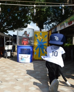 Tampa Bay Rays DJ Kitty throws out the first pitch.